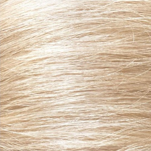 10.2 Lightest Blonde Ash
