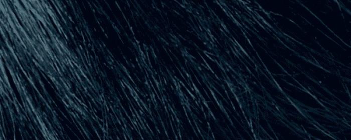 No.02 Modročerná 1.10