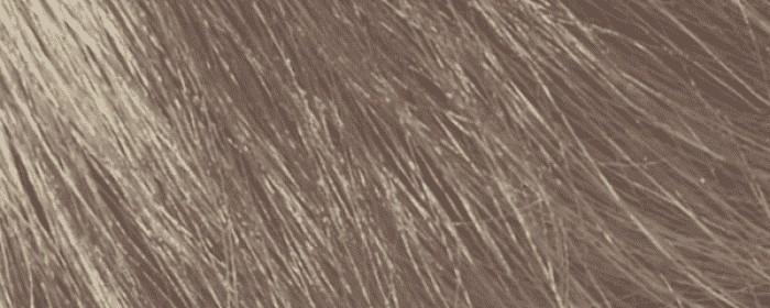 No.14 Přírodní popelavá blond 7.01