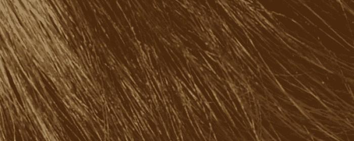 No.18 Světlý blond zlatavě měděný 8.43