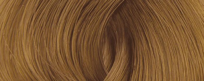 No.11 Světlá zlatavá blond 8.3